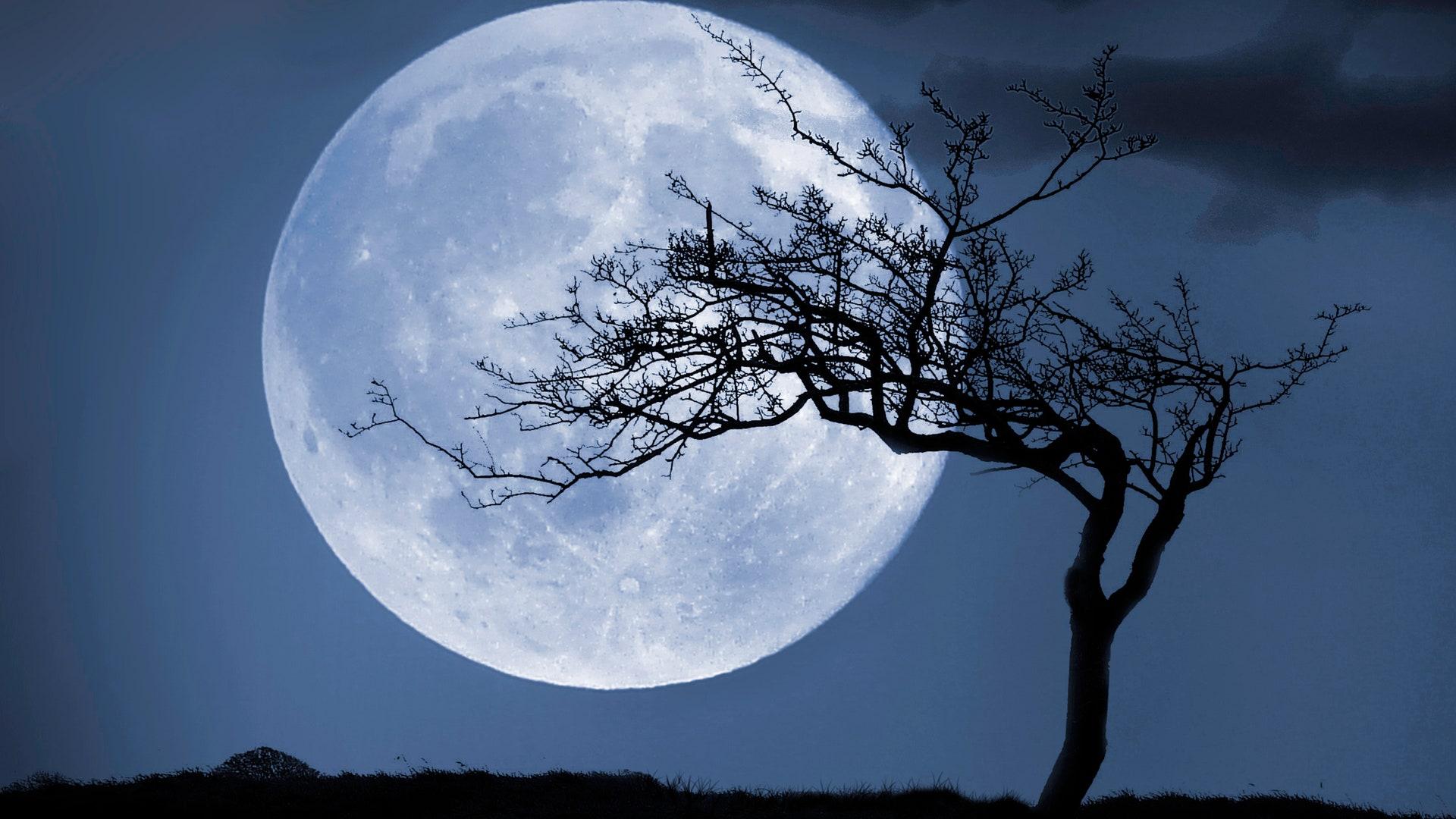 un-pensiero-alla-luna-Jessica-Venturi